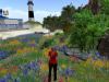 Flower Garden Particles Emitter 042410_005
