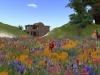 Flower Garden Particles Emitter 042410_002
