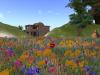 Flower Garden Particles Emitter 042410_003