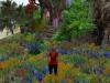 Flower Garden Particles Emitter 042410_004